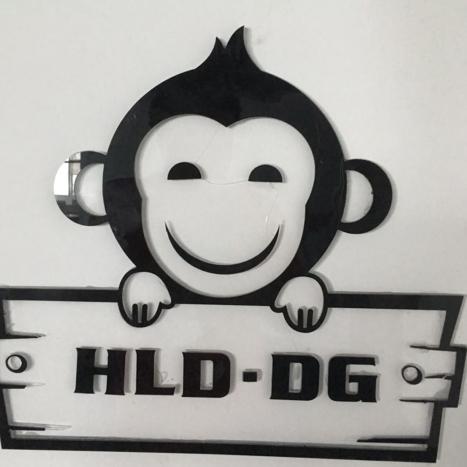 HLD-DG