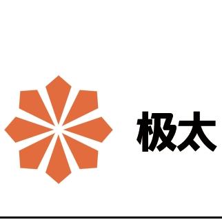 上海极太信息